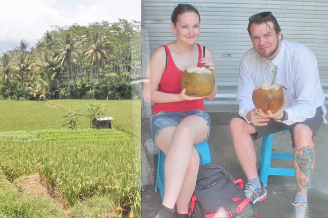 Bali Reisterassen Kokosnuss schlürfen