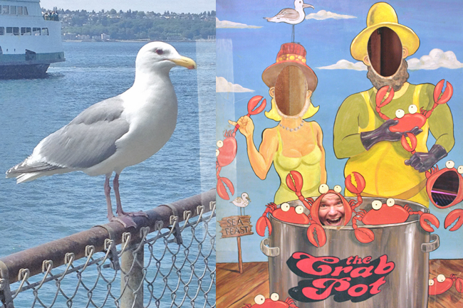 Seattle Washington USA Westküste Roadtrip Ivar's Fish Bar Seagull Seafood Crab